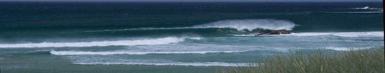 Hosta Beach.
